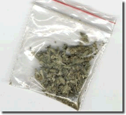 Bag of marijuana